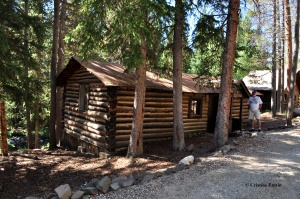 100+ year old cabin.