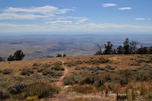 Looking out at the vastness of Wyoming from the northern Bighorns.